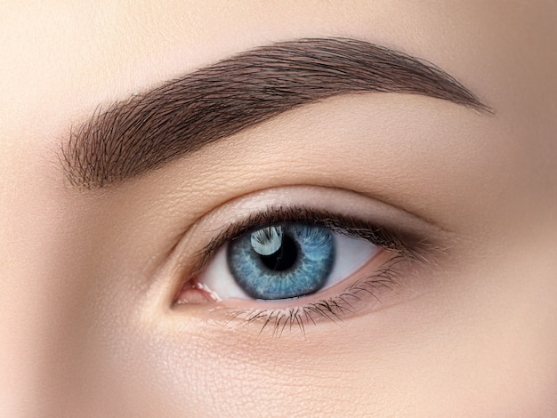 Close up view of beautiful blue female eye. perfect trendy eyebrow. good vision, contact lenses, brow bar or fashion eyebrow makeup concept