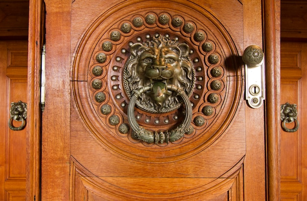 Close up view of a beautiful detailed doorknob in the shape of a lion.