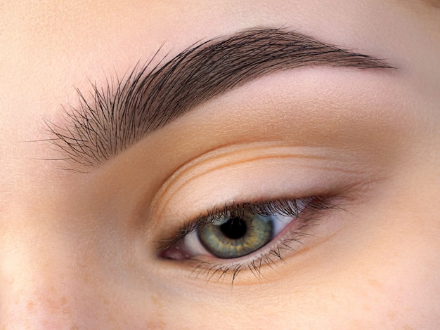 Close up view of beautiful green female eye with perfect trendy eyebrow