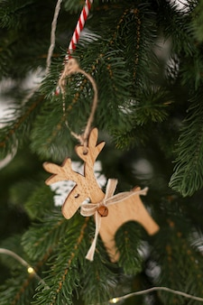 Close-up view of christmas tree concept