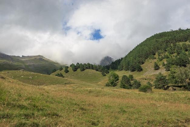 国立公園ドンバイ、コーカサス、ロシア、ヨーロッパの森と山のシーンをクローズアップ。夏の風景、太陽の光の天気、劇的な青い空と晴れた日
