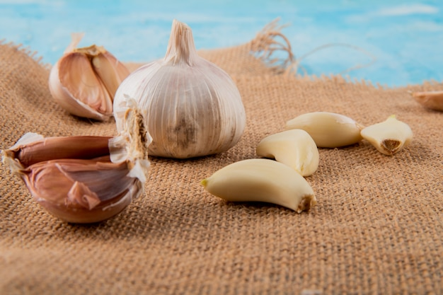 Close-up view of garlic bulbs and peeled cloves on sackcloth surface and blue background