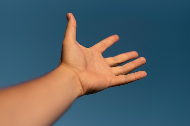 Close-up view of a hand in the air
