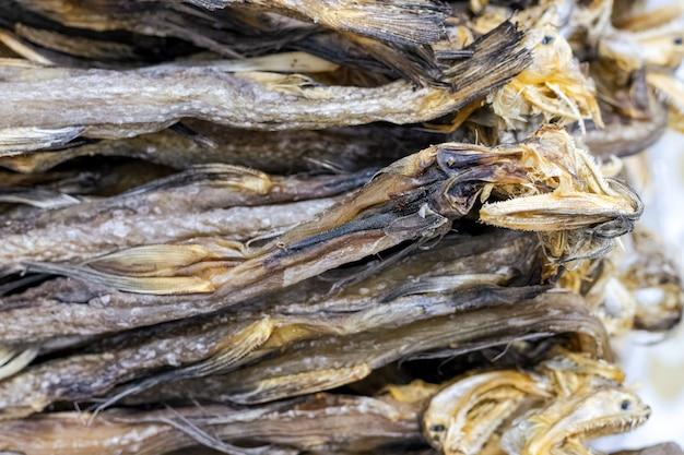 선별적으로 초점을 맞춘 말린 봄베이 오리 바다 물고기 더미의 클로즈업 보기