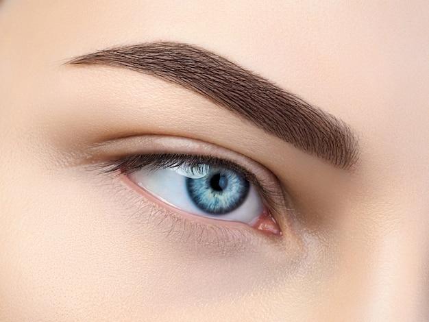 Крупным планом вид красивых голубых женских глаз. идеальные модные брови.