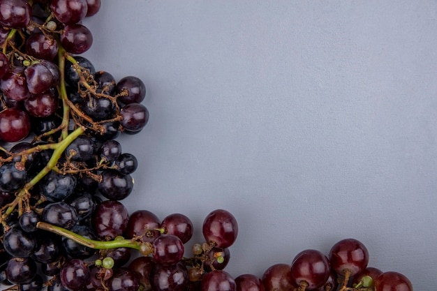 灰色の背景に黒と赤のブドウの拡大図