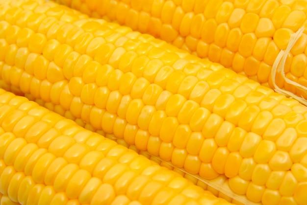 Крупным планом вид свежего зерна кукурузы