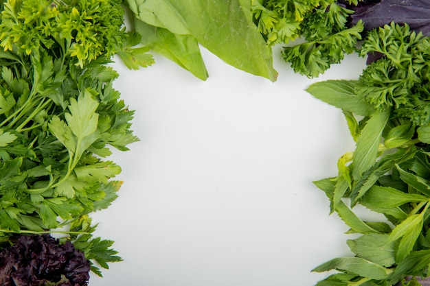Взгляд конца-вверх зеленых овощей как базилик салата мяты кориандра на белой таблице с космосом экземпляра