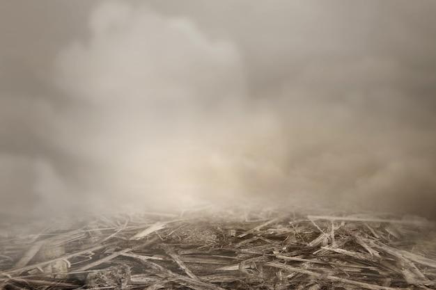 霧の背景と土の地面のクローズアップビュー
