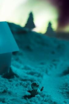 小さな雪だるまのクローズアップビュー