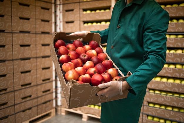 有機食品工場の倉庫で赤いリンゴでいっぱいの木枠を保持している認識できない労働者のクローズアップビュー。