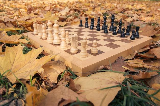 Крупным планом вид деревянной шахматной доски и фигур на травянистой земле, покрытой сухими желтыми листьями.