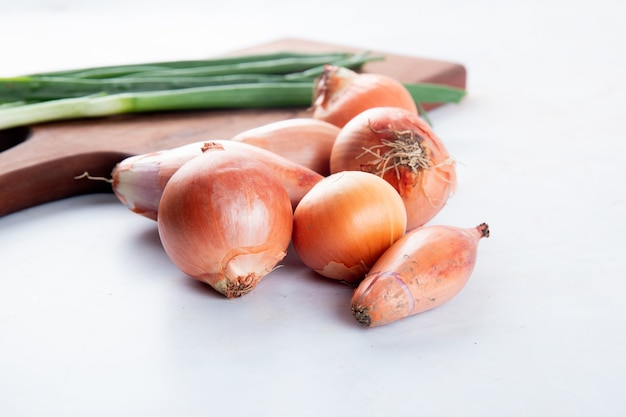 Close-up view of onions and shallots on white background with copy space