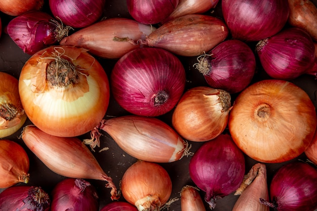Close-up view of pattern of different types of onions