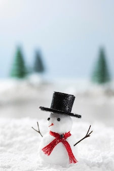 Close-up view of snowman winter concept