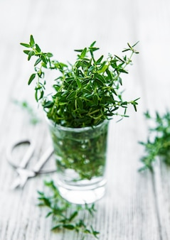Close up view of thyme bunch. green thyme in a glass