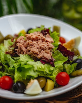 Close up view of tuna salad with cherry tomatoes, eggs and olives in a white plate