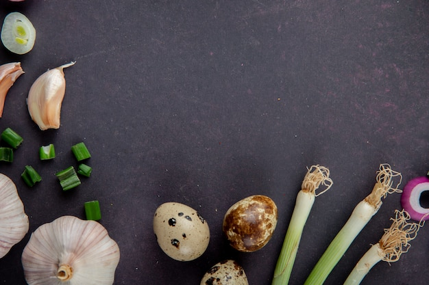 Close-up view of vegetables as egg garlic scallion on maroon background with copy space