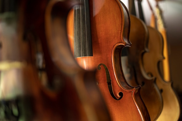 Close up view of violins music instrument