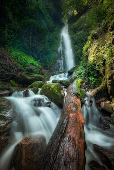 Close up view waterfall in deep forest at national park, waterfall river scene.