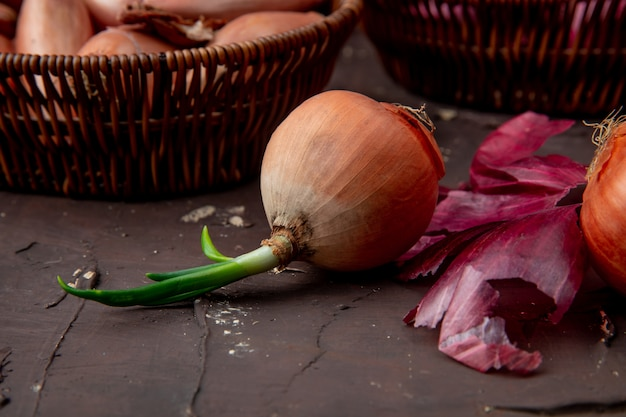 Close-up view of whole onion on maroon background