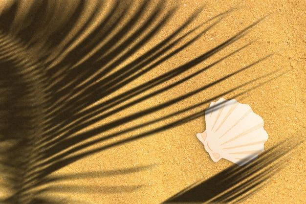 모래 해변에 고립 된 보기 나무 바다 조개를 닫습니다. 텍스트 복사 공간을 추가했습니다.