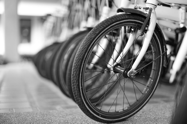 Close up the vintage bicycles in the shop as black and white photo.