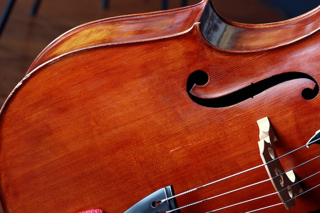 Close up of violoncello instrument