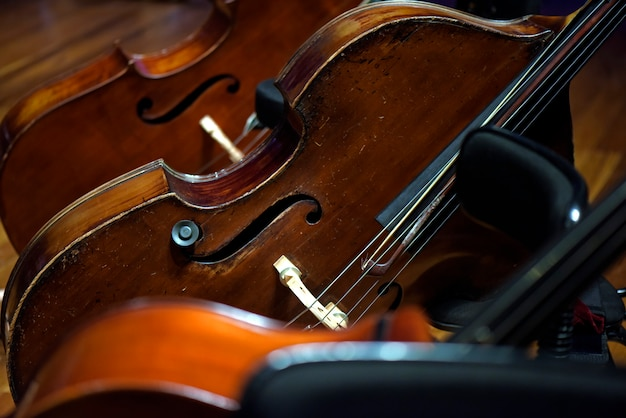 Close up of violoncello instruments