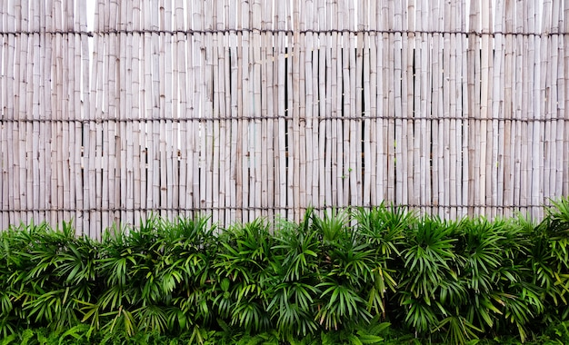 Close up of wall made of vintage bamboo fence
