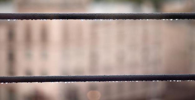 자연이 흐릿한 배경으로 케이블 라인에 물방울을 닫습니다. 비오는 날.