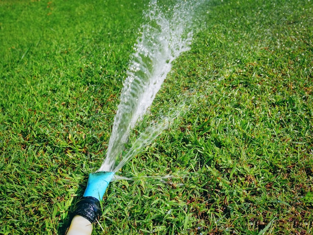 Close-up water hose spraying water on green grass field