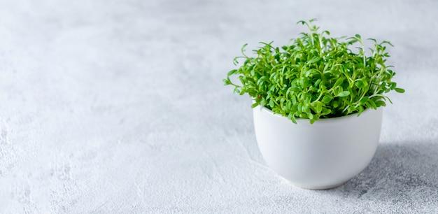 Закройте вверх по кресс-салату в меньшем белом шаре на светлой предпосылке.