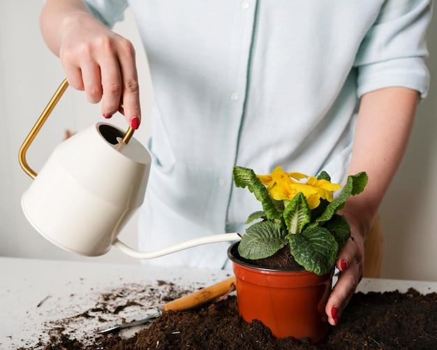 Крупным планом полив растений