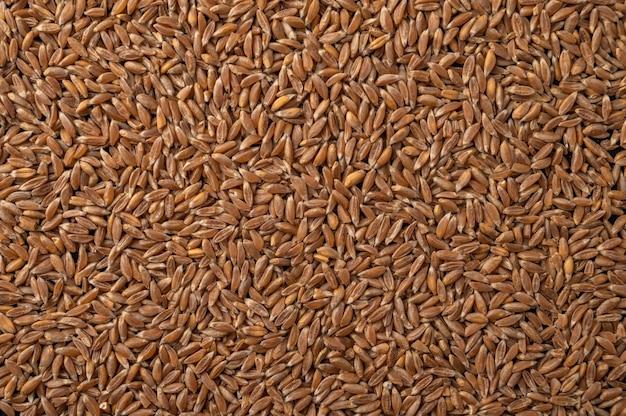 Крупным планом пшеницы, ржи и ячменя зерна продовольственного фона