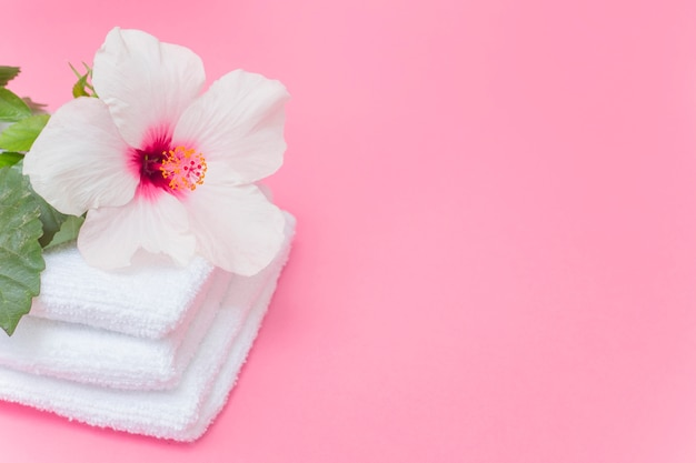 Close-up of white hibiscus flower and towels on pink backdrop