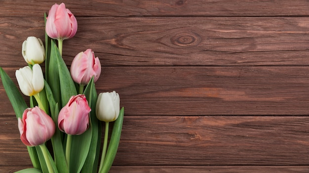 Close-up of white and pink tulips on wooden textured background