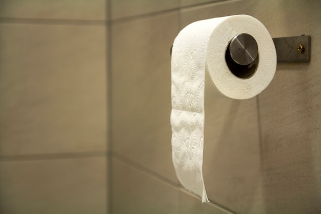 Close-up of white soft tissue paper roll in bathroom.