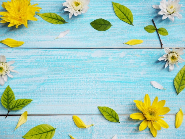 Close up white and yellow chrysanthemum flowers on blue wood frame background