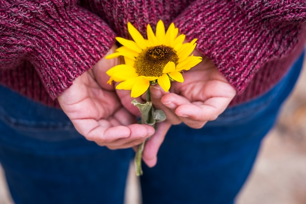 Close up with vintage tones and colors of sun flower on the rear pocket of casual woman jeans back.