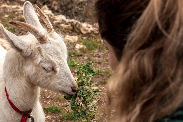 Крупным планом женщина и милая коза