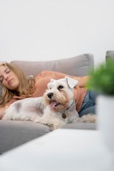 ソファの上の女性と犬をクローズアップ