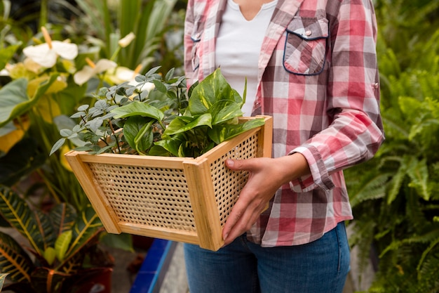 Close-up woman carrying basket in greenhouse