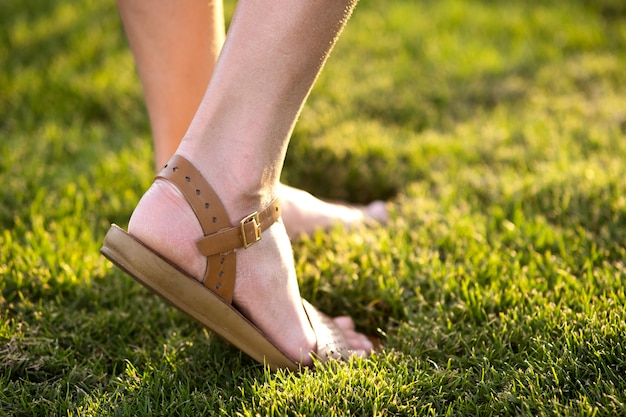 Close up of woman feet in summer sandals shoes walking on spring lawn covered with fresh green grass
