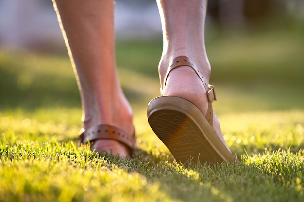 Close up of woman feet walking on spring lawn covered with fresh green grass.
