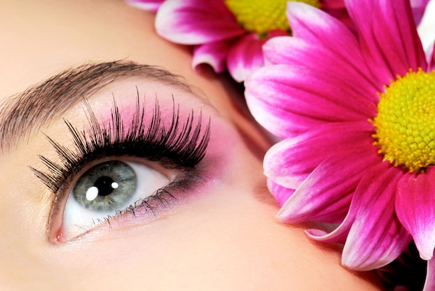 Close-up of woman green eye. pink flower on space.