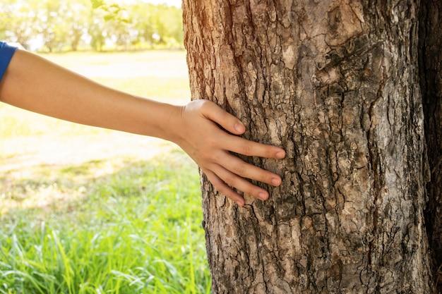 그녀가 정원에서 걷는 동안 나무 줄기를 만지고 여자 손을 닫습니다.