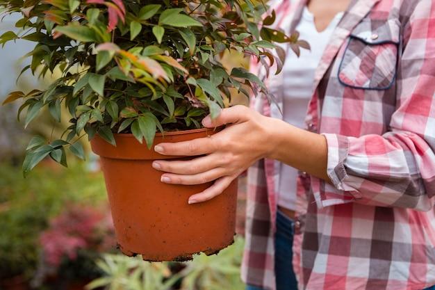 Крупным планом женщина, держащая большой цветочный горшок