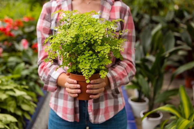 Женщина конца-вверх держа цветочный горшок в парнике