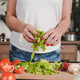 Close-up of woman's hand holding lettuce in hands